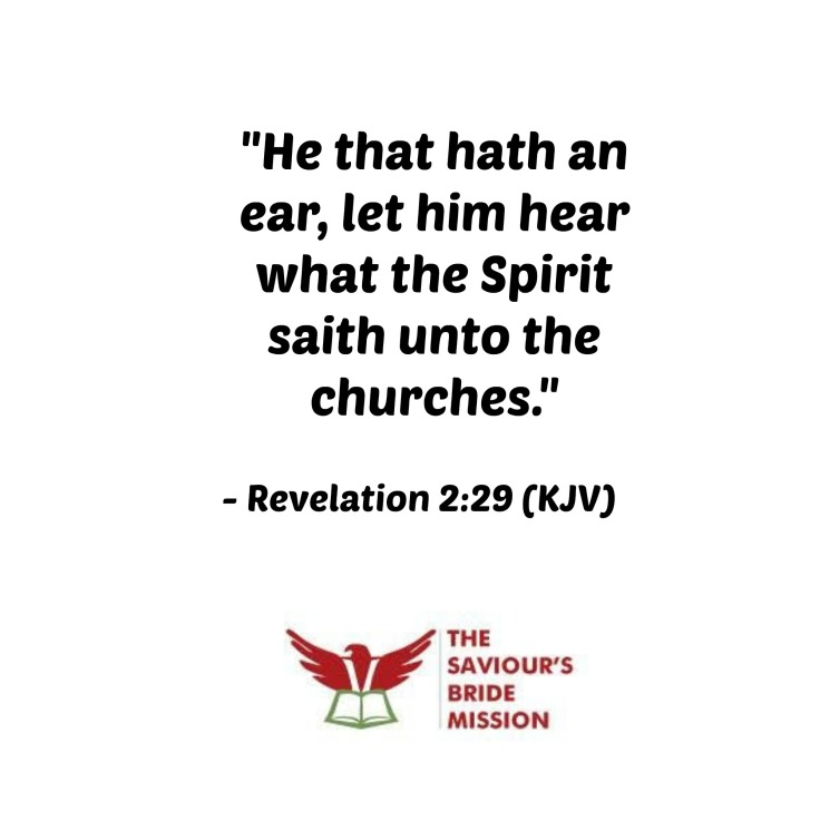 Revelation 229
