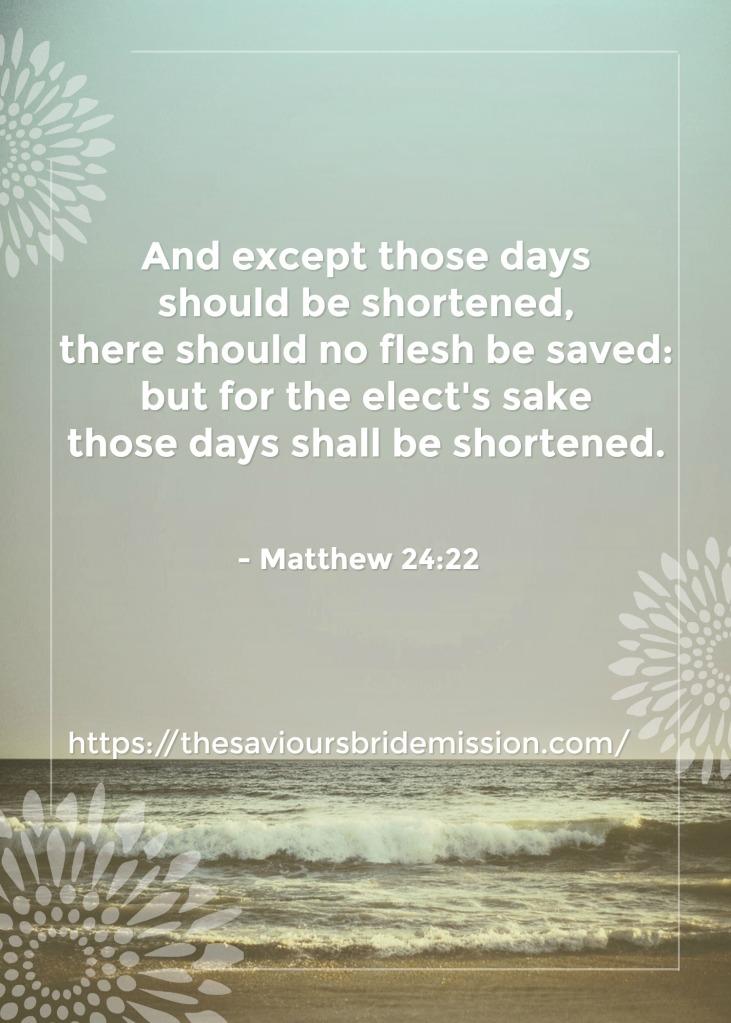 Matthew24vs22