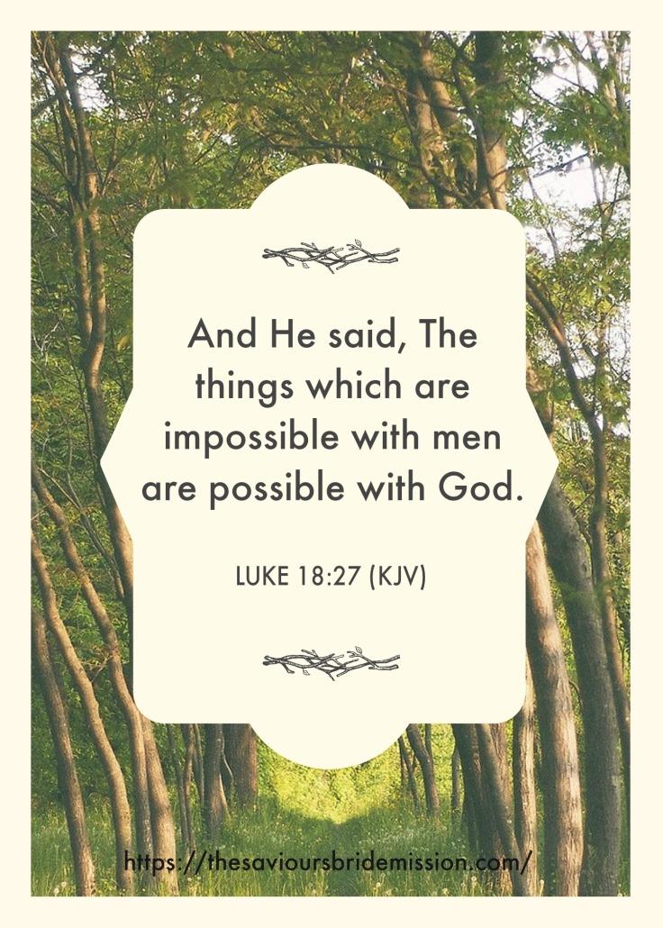 Luke18vs27