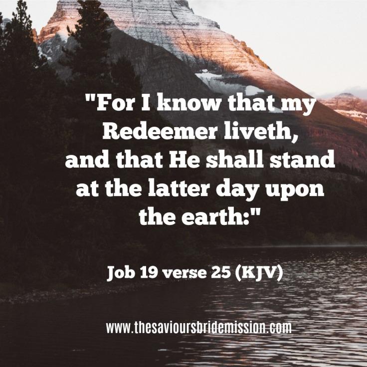 Job19verse25